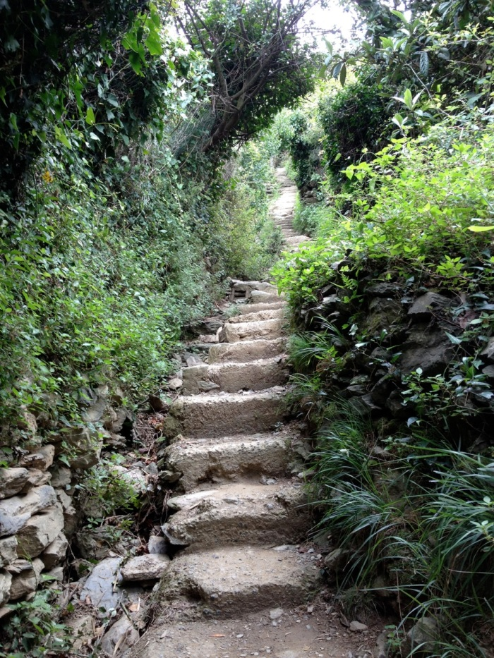 A large percentage of this trail was stairway. You can see in other photos the height of these foothills as they jut into the water. The Cinque Terre are five of these mountain arms, each with its own village at the tip. So we hiked up the side of one and back down again, from sea level to sea level.