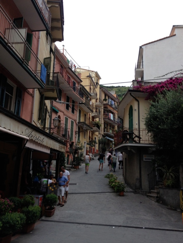 Manarola, as we walked back toward the next train, bound for Riomaggiore.