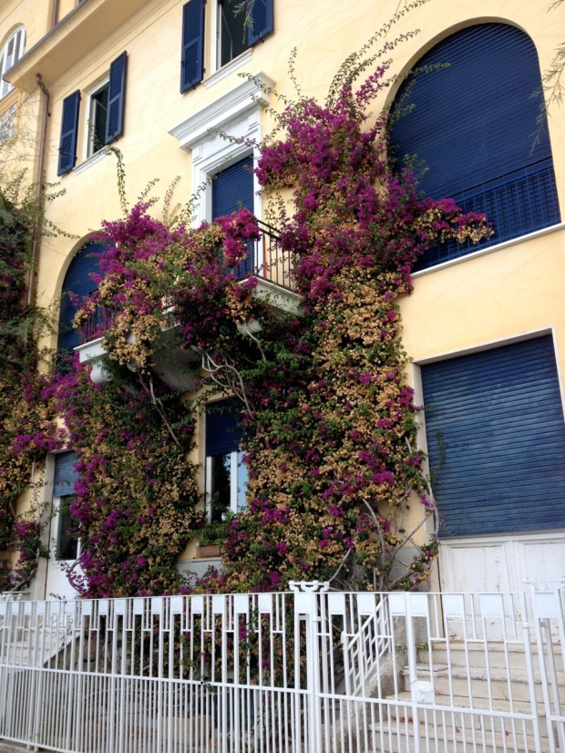 This was my favorite building of all in Monterosso. It was even more lovely seen from a distance when we were swimming out in the water. The gold walls with bougainvillea climbing them were so dramatic and so quintessentially Italian.